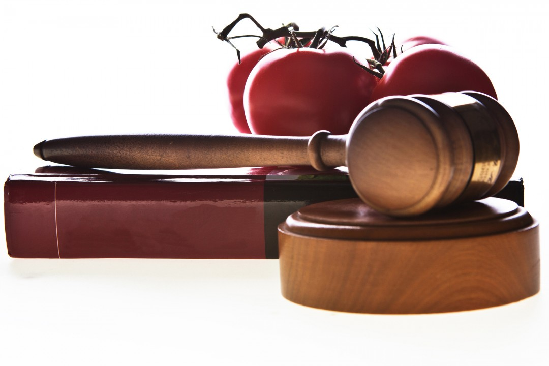 Gavel, book and food.
